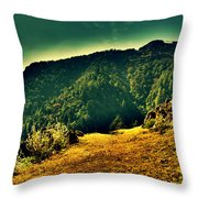 Meadows 2 Throw Pillow