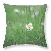 Meadows Of Heaven Throw Pillow
