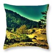 Meadows Throw Pillow