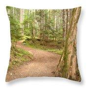 Meandering Along Cheakamus Lake Throw Pillow