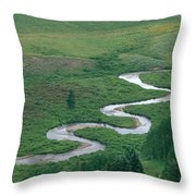 Meandering East River Throw Pillow