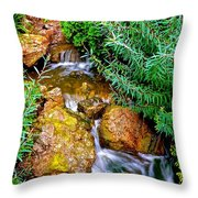 Meandering Flow Throw Pillow