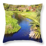 Meandering Stream Throw Pillow
