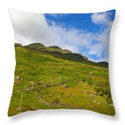 Meandering Wall Throw Pillow