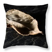 Meanwhile The World Goes On Throw Pillow