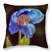 Meconopsis Himalayan Blue Poppy Throw Pillow