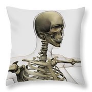 Medical Illustration Of A Womans Skull Throw Pillow by Stocktrek Images