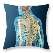 Medical Illustration Of Human Brain Throw Pillow