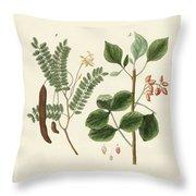 Medicinal Plants Throw Pillow