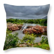 Medicine Park II Throw Pillow by Toni Hopper