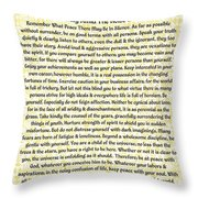 Medieval Provencal Desiderata Poster Throw Pillow