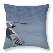 Mediterranean Gulls  Throw Pillow