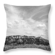 Medora 41 Throw Pillow