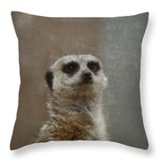 Meerkat 5 Throw Pillow