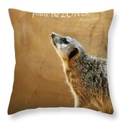 Meerkat Praise Throw Pillow by Methune Hively