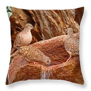 Meeting At The Fountain Throw Pillow
