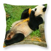 Mei Xiang Chowing On Frozen Treat Throw Pillow