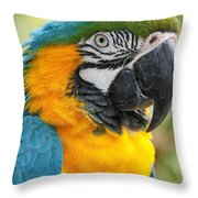 Mele E Manono Ia Ea Macao Tropical Birds Of Hawaii Throw Pillow