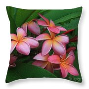 Melia Hae Hawaii Pink Tropical Plumeria Keanae Throw Pillow