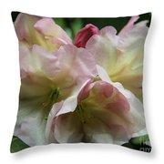 Mellow Pink Throw Pillow