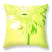 Melon Ball Zinnia Throw Pillow