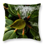 Melting Crystals Throw Pillow
