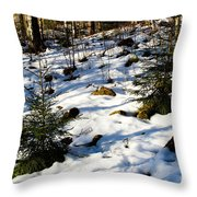 Melting Snow In A Forest In Late Winter Throw Pillow