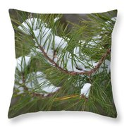 Melting Snow In The Pines Throw Pillow