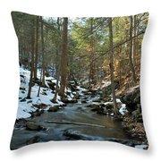 Melting Snow Throw Pillow