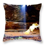 Memorial Falls IIi Throw Pillow