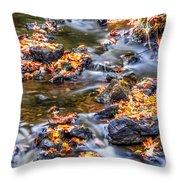 Memorial Falls Iv Throw Pillow