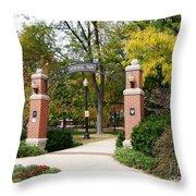 Memorial Park Autumn Throw Pillow