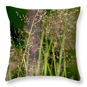 Memories Of Springtime Throw Pillow