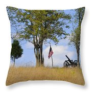 Memory 150 Years Later Throw Pillow