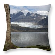Mendenhall Glacier In Late Fall Throw Pillow