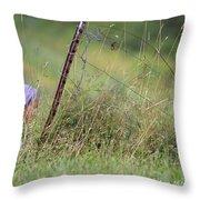 Mending Fences Rw2k14 Throw Pillow