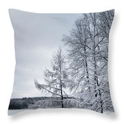 Mendon Pond Trees Throw Pillow