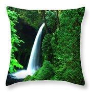 Menteko Falls  Throw Pillow