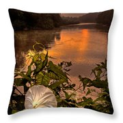 Meramec River At Chouteau Claim Throw Pillow