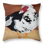 Merganser Duck Painted On Cedar Throw Pillow