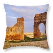 Merinid Tombs Ruins In Fes In Morocco Throw Pillow