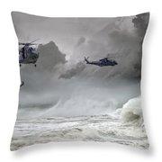 Merlin Rescue Throw Pillow