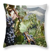 Merlot Ready Throw Pillow