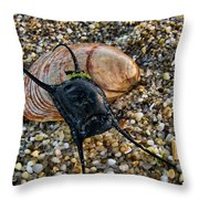 Mermaids Purse Throw Pillow