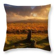Merrivale Stone Rows Throw Pillow
