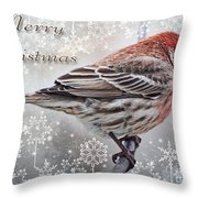 Merry Christman Finch Greeting Card Throw Pillow