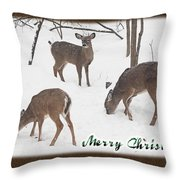 Merry Christmas Card - Whitetail Deer In Snow Throw Pillow