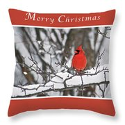 Merry Christmas Male Cardinal Throw Pillow