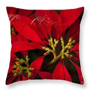 Merry Christmas - Poinsettia  - Euphorbia Pulcherrima Throw Pillow
