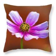 Merry Cosmos Floral Throw Pillow
